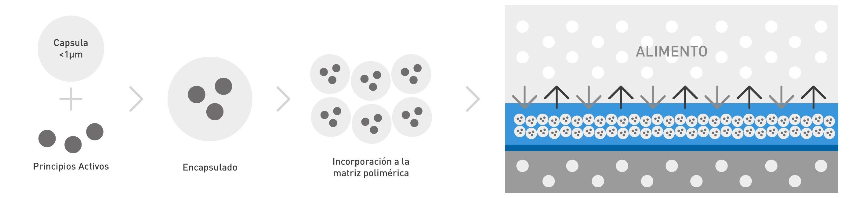 NUREL Engineering Polymers Envases Activos: Tecnología de Microencapsulación